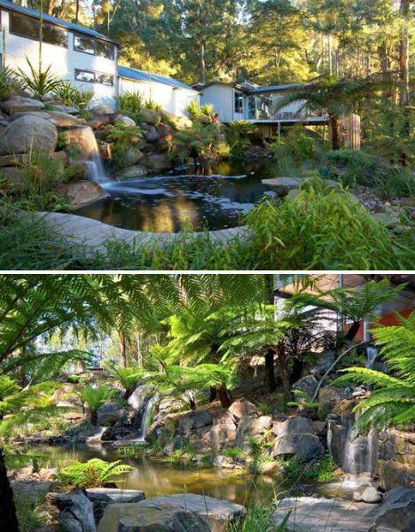 Natural Swimming Pools Billabong
