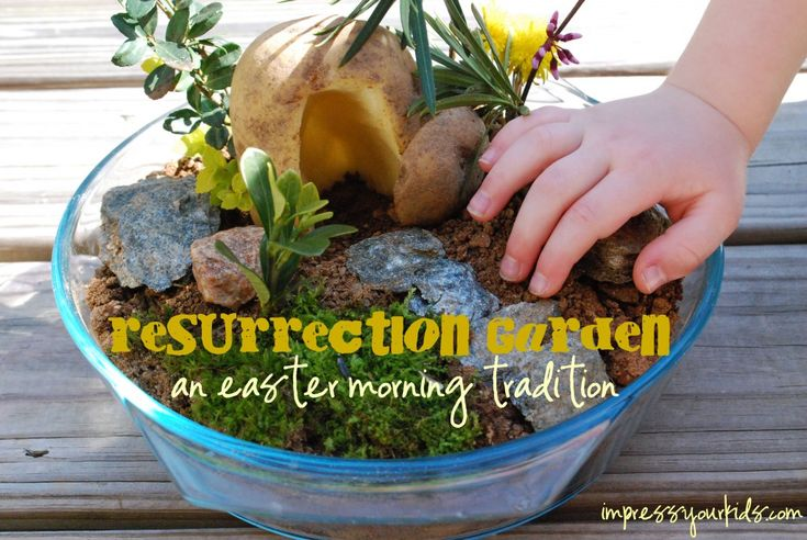 "I really like this idea: Have you and the kids make one of these from a glass baking deep dish/bowl with a Potato and vegetation from the back yard on Good Friday. By Saturday night, the leaves are wilting and drying out. So when the Kids are asleep, You fill the garden with fresh flowers and roll the entrance to the ""tomb"" away.: Mini Garden, Resurrection Sunday, Gardens, Resurrection Garden, Kids, Easter Spring, Easter Ideas"