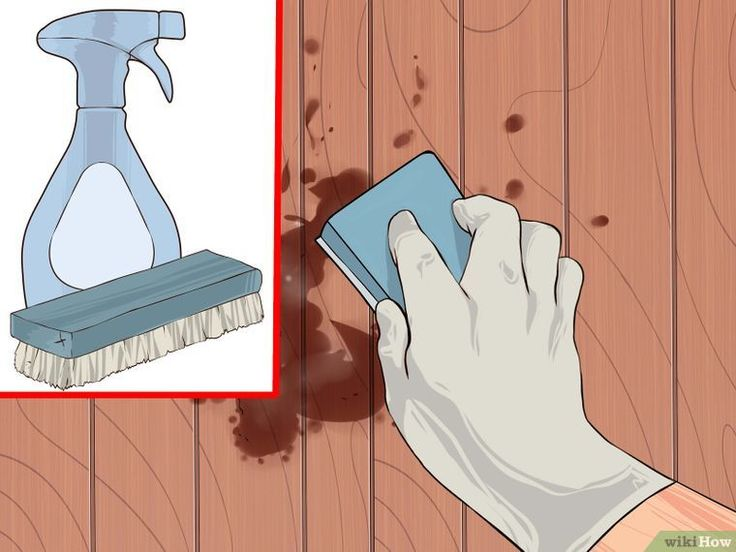 How to Remove Mold Stains from Wood Floors: 12 Steps