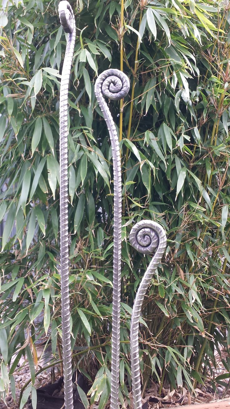 repurposed rebar fiddlehead fern garden stakes - would be great for hose-guards