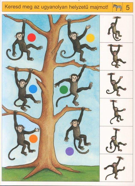 Zoek waar alle apen in de boom hangen en trek er een lijn tussen, free printable