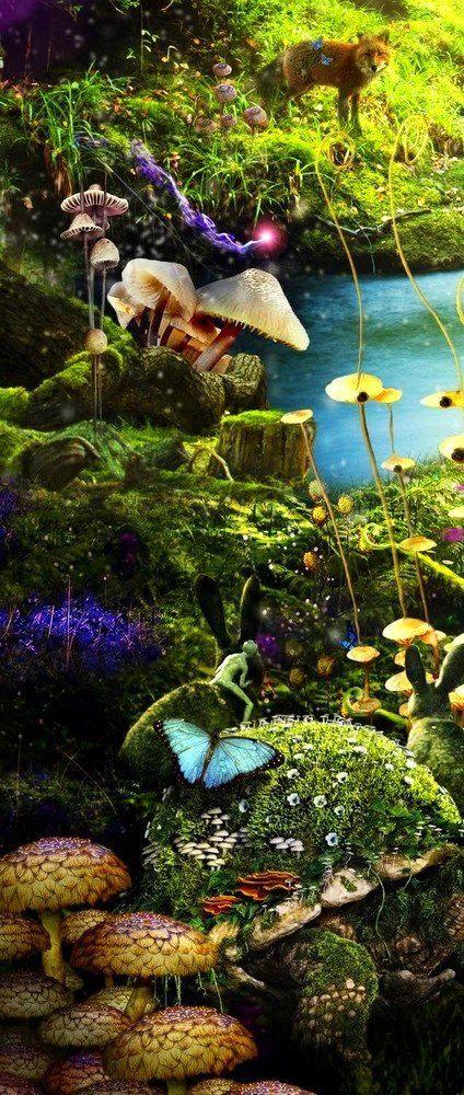 Fairy Land ❤