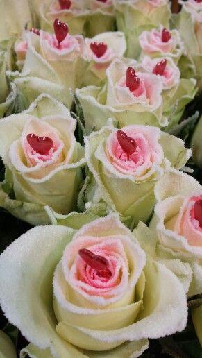 Valentijnsdag rozen 'amour' love it