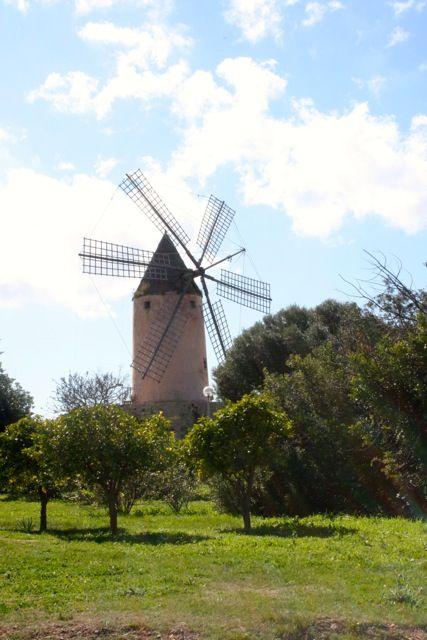 Auch das ist Mallorca... mit dem Fahrrad und http://www.radsport-mallorca.de/ unterwegs...
