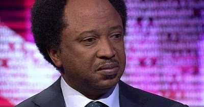 The Senator representing Kaduna Central senatorial district Shehu Sani has called on President Muhammadu Buhari to urgently purge his cabinet of hyenas jackals and wolves in his efforts to move the country forward.  Senator Sani who described the Hyenas Jackals and wolves as elements within the cycle of presidency said they have personal interest other than that of Mr. President.  The human right activist and politician who spoke with newsmen who paid him a Sallah homage said the need for…