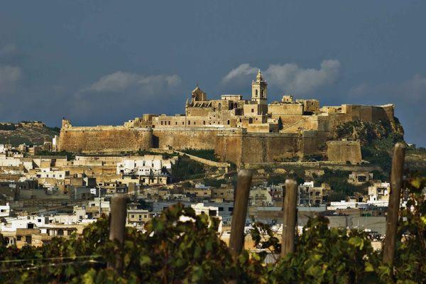 Troveremo bellissime città, come la capitale La Valletta, famosa per i suoi edifici color ocra in perenne contrasto con un sorprendente mare dalle sfumature violacee. http://www.jonas.it/vacanze_Malta_781.html
