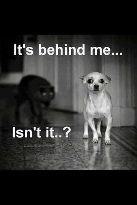 its behind me...isnt it?