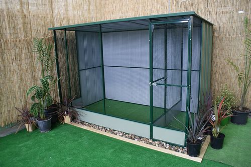 indoor aviary - Google Search