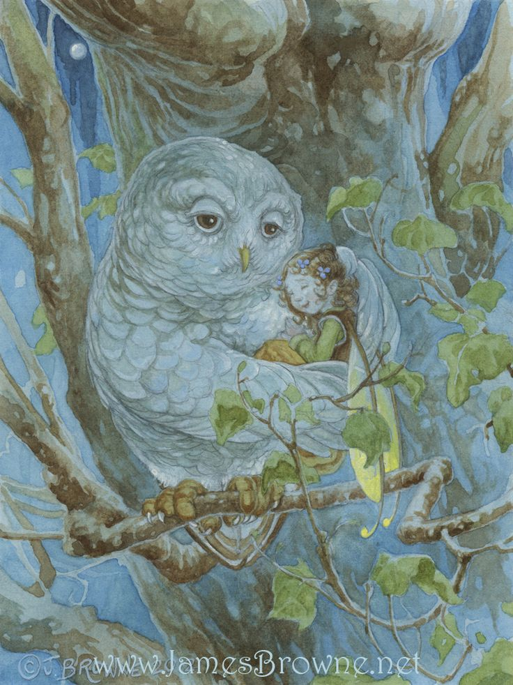 ilustración de Janes Browne