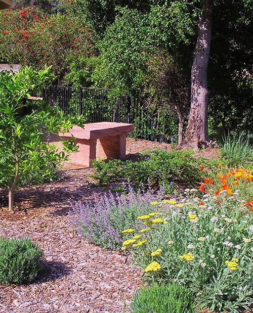natural garden with bark pathway