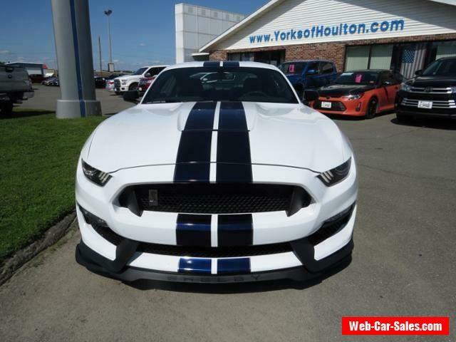 2019 Ford Mustang Shelby Gt 350 Ford Mustang Forsale Usa