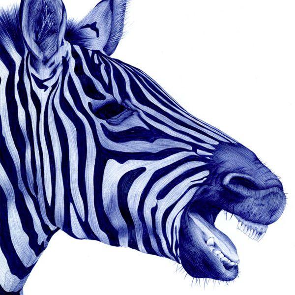 Bic Pen Animal Portraits by Sarah Esteje