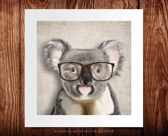 A smiling koala with glasses on rustic cotton background poster 8x8 illustration print on
