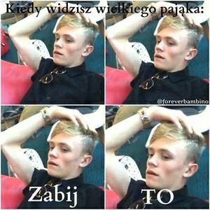 bars and melody polskie memy - Szukaj w Google