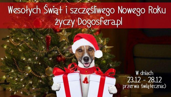 Dogosfera.pl
