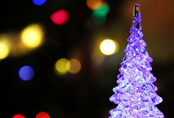 Starfish: Magic of Christmas or why I Believe in Holidays