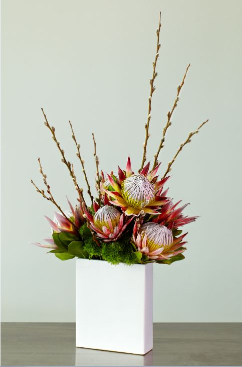 Modern King Protea, and Pussy Willow arrangement.
