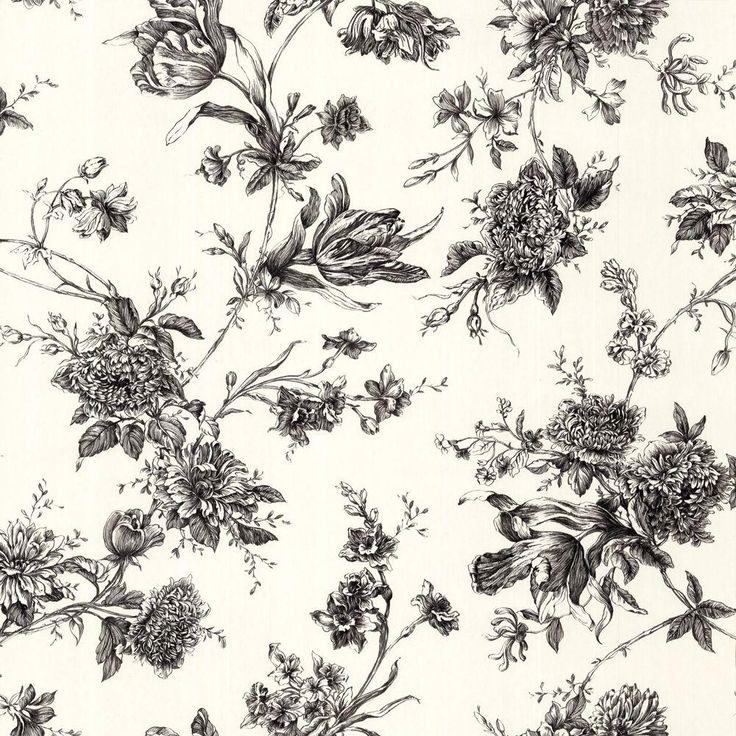 The Wallpaper Company 56 Sq Ft Black And White Large Floral WC1283407