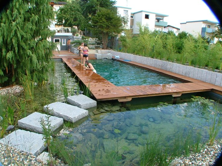 Bionova natural swimming pool in germany bionova natural for Koi pond swimming pool