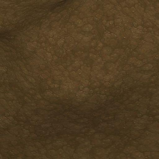 handpaintedtextures_dirt-ground-5_0.jpg (512×512)