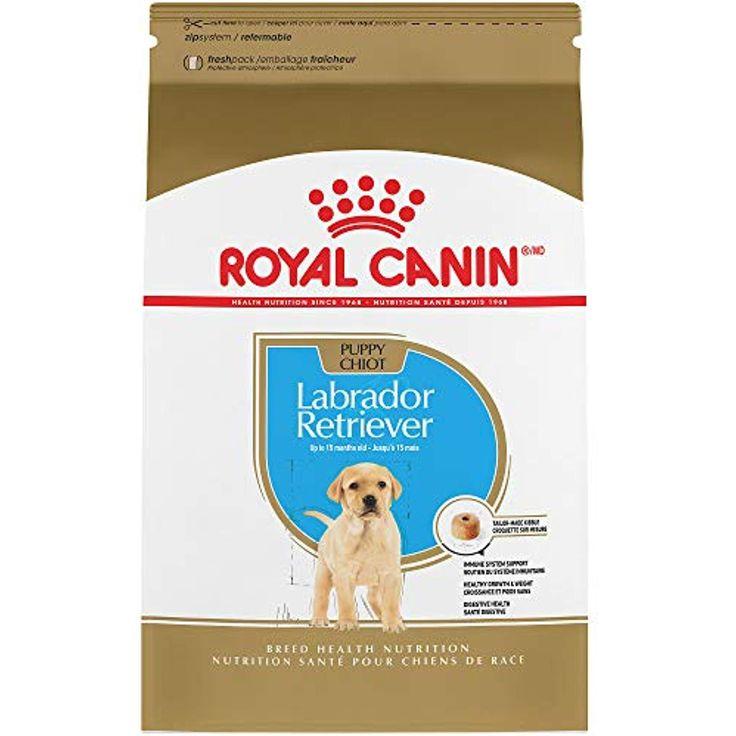 Royal Canin Breed Health Nutrition Labrador Retriever