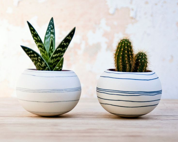 colorful porcelain planter light gray stripes. Ceramic planter for cactus, succulent, air plant. Mini pot for plants Crafted by Wapa Studio. de wapa en Etsy https://www.etsy.com/es/listing/187072146/colorful-porcelain-planter-light-gray