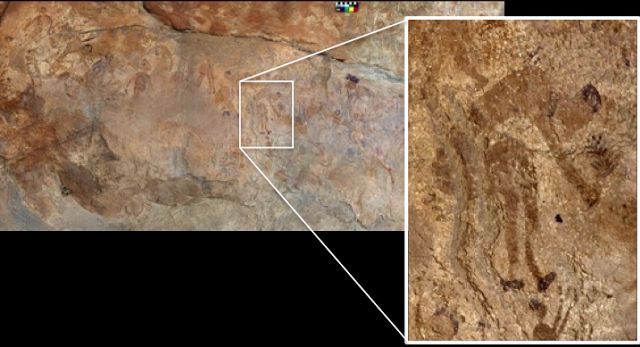 Earliest evidence discovered of plants cooked in ancient pottery (in Northern Africa) - Are there any plant-people rock paintings in Southern Africa?