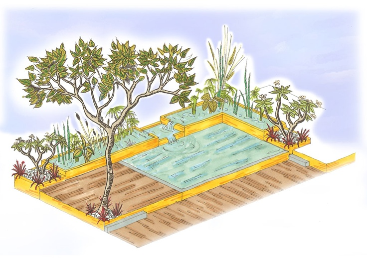 sch ma piscine naturelle pinterest. Black Bedroom Furniture Sets. Home Design Ideas