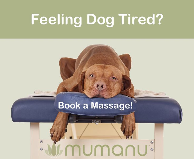 Get your energy back... Come and see us for a fantastic massage www.mumanu.co.uk