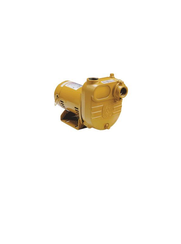 Little Giant 621825 BE 58 GPM 115V/230V Non-Submersible Effluent Pump Pumps Waste Water Pumps Effluent Pumps