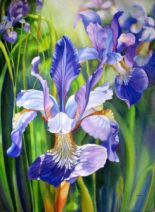 Maison Interieur Bois Moderne :  iris iris orchidée miyuki oeil couleur peinture iris aquarelle 1