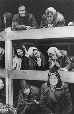 Former women prisoners on the wooden bunks that served as beds, in Auschwitz concentration camp.