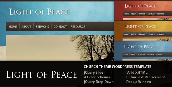 free and premium church wordpress themes Light 30 Free and Premium Church Wordpress Themes