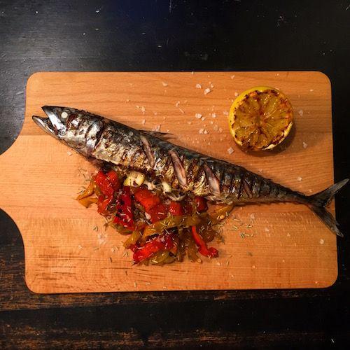 Grillet makrel med citron, krydderurter og grillede peberfrugter