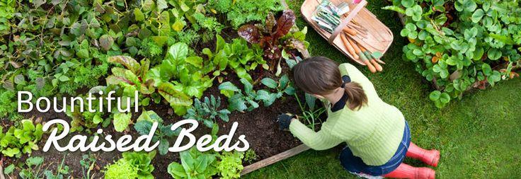 Compost for Sale | Compost Soil | Soil3
