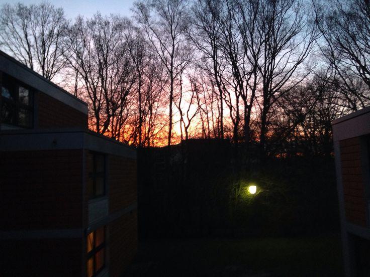 Ausblick von meiner Wohnung in Kiwittsmoor
