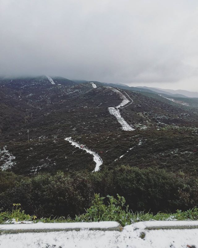 🌲#snow #sardinia #pinetadisinnai #tree #motherearth #mothernature #picoftheday #photoftheday #beauty #beautifultime #lovenature #lovesardegna #sardegnagram #lovetrees #green #peace #peaceful #winterinsardinia #winter #nature #moodoftheday #goodmorning #goodvibes #instanature #instalike #love #beauty  #awesome #sardegna #mountain #landscapes