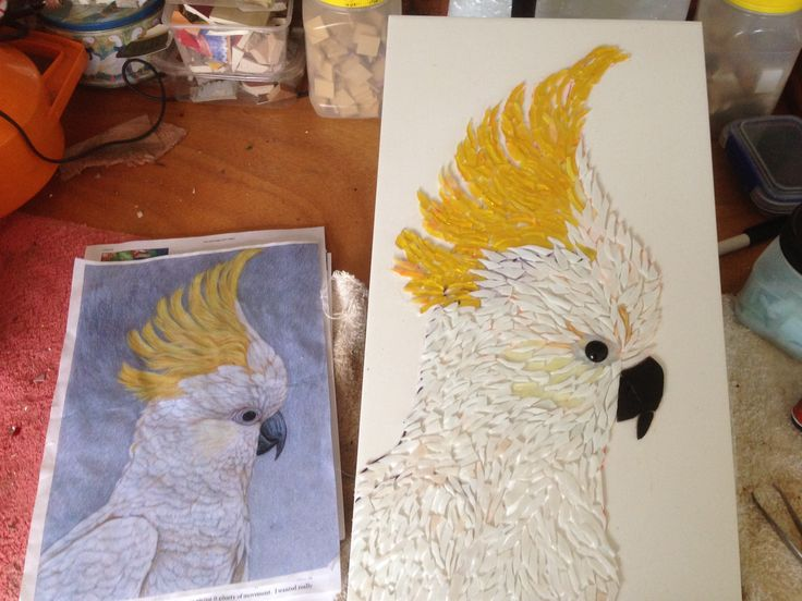 Feb 2015 cockatoo in progress,glass onto a wall tile,adapted from an australian artist. Will do a blue background in vitreous glass tiles, then probably three different grout colours. he will look splendid on the back wall of our house.