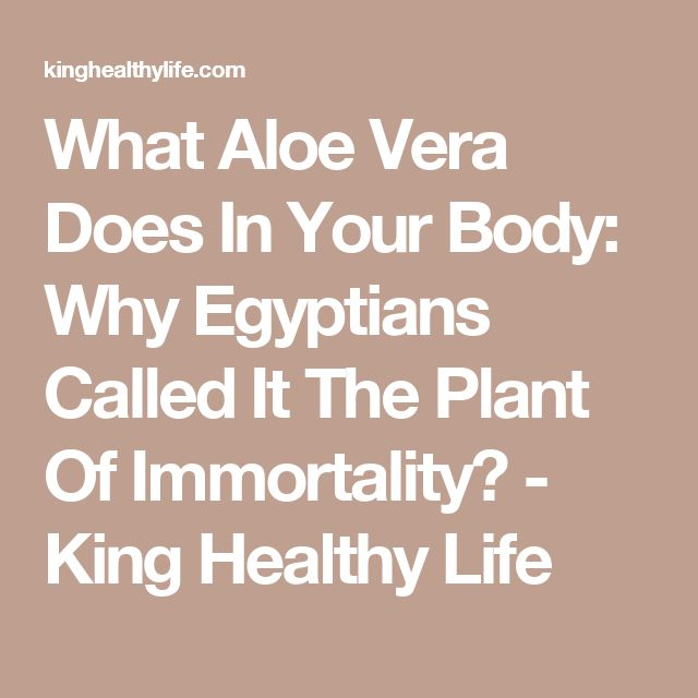 What Aloe Vera Does In Your Body: Why Egyptians Called It The Plant Of Immortality? - King Healthy Life