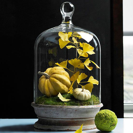 Fall Display: Capture fall inside a bell jar set atop a shallow terra-cotta bulb dish. Line the dish with moss, add a few small gourds and branches of leaves, and top with a bell jar. You can also use a terrarium or even a glass cake cover to create this look. For added effect, arrange a few objects around the base of the dish.