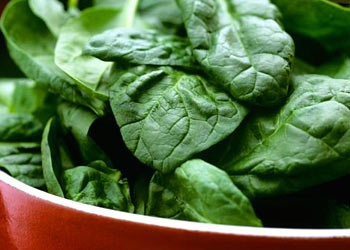 Healthy foods you should eat everyday!