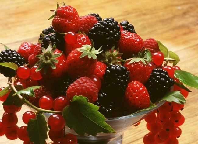 http://www.rustica.fr - Soins d'hiver des petits fruits
