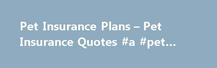 Pet Insurance Plans – Pet Insurance Quotes #a #pet #store http://pet.remmont.com/pet-insurance-plans-pet-insurance-quotes-a-pet-store/  Pet Insurance There are many tough choices we're faced with in life, but Farmers believes you shouldn't have to make one when it comes to your pet – like when your pet gets sick or hurt and the vet bills start adding up. Pet Insurance provides coverage when your pet needs medical care for unexpected accidents, illnesses, emergency care and every day…