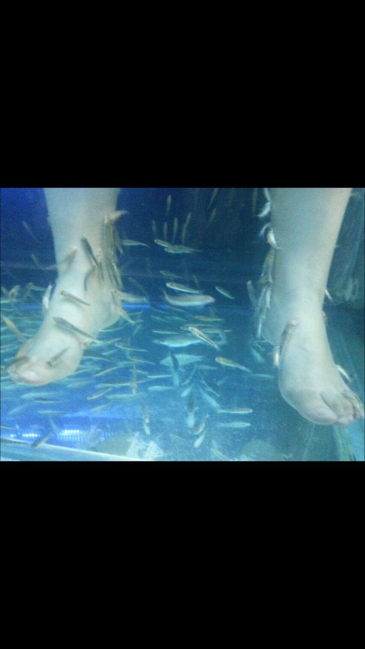 Bangkok fish spa