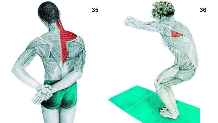 36 exercícios para você fazer em casa e se livrar das dores nas costas e articulações!  Cura pela Natureza.  http://www.curapelanatureza.com.br/post/08/2016/36-exercicios-para-voce-fazer-em-casa-e-se-livrar-das-dores-nas-costas-e-articulacoes