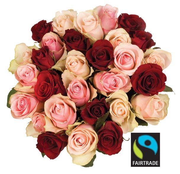 Fairtrade-merkede roser fra Mester Grønn
