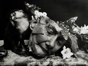 Memento Mori- Responses in contemporary photography | Memento Mori