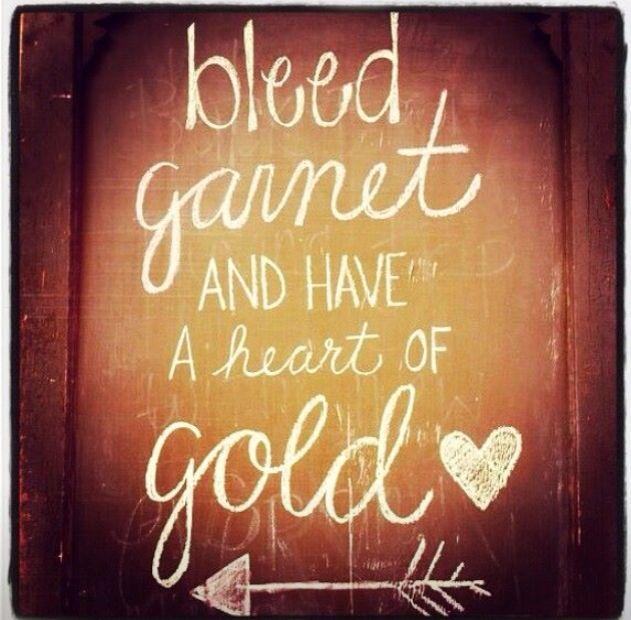 Bleed garnet Have a heart of gold Go Noles.