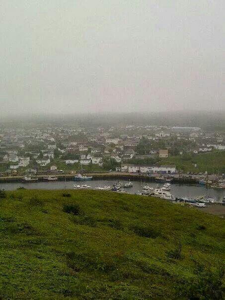 Foggy day in Fortune, Newfoundland