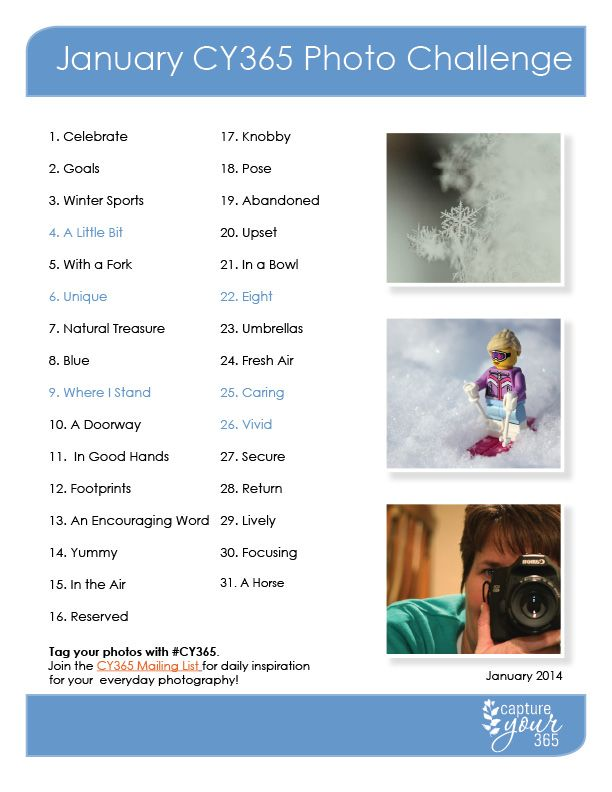 January CY365 Photo Challenge List | 2014